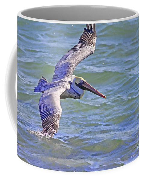 Pelican Coffee Mug featuring the photograph Tip Of The Wing by Deborah Benoit