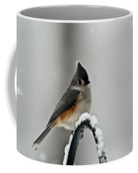 Titmouse Coffee Mug featuring the photograph Titmouse In The Snow by Douglas Barnett