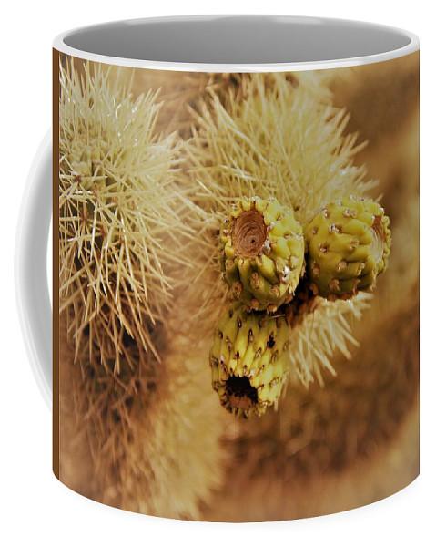 Cactus Coffee Mug featuring the photograph To Close by Ronda Korbelik
