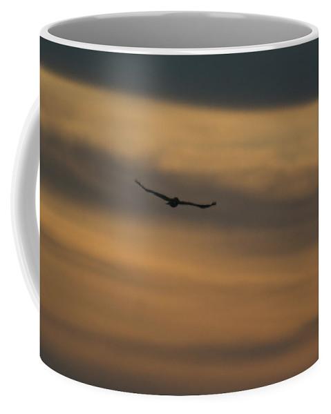 Hawk Coffee Mug featuring the photograph To Soar - Free by Douglas Barnett