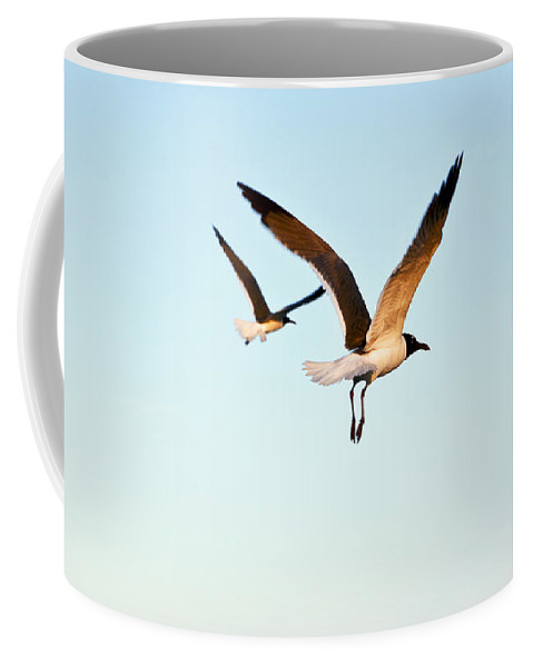 Two Coffee Mug featuring the photograph Together by Marilyn Hunt