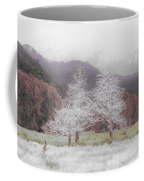 Landscape Coffee Mug featuring the photograph Together We Stand by Holly Kempe