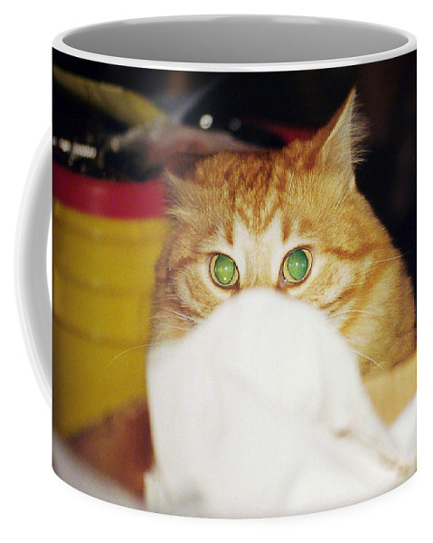 Cat Coffee Mug featuring the photograph Tommy by Kenneth Albin