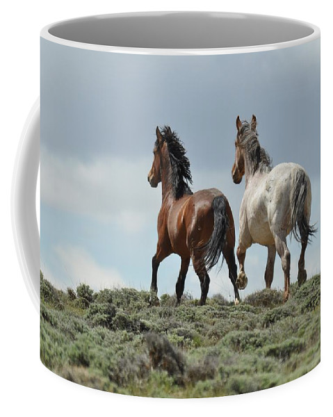 Wild Horses Coffee Mug featuring the photograph Too Beautiful by Frank Madia