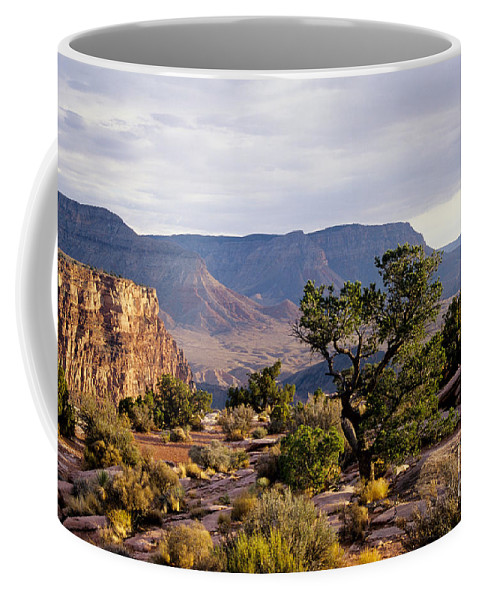 Arizona Coffee Mug featuring the photograph Toroweap by Kathy McClure