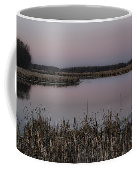 Light Coffee Mug featuring the photograph Total Peace And Calm by Deborah Benoit