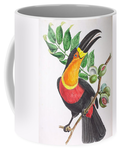 Descourtilz Coffee Mug featuring the painting Toucan Ariel by Jean Theodore Descourtilz