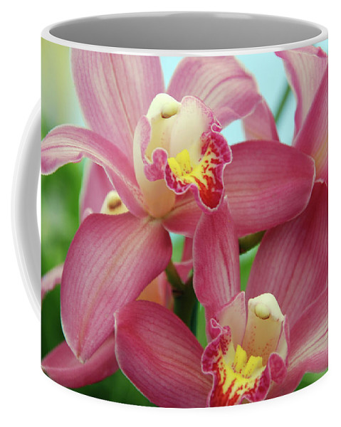 Orchids Coffee Mug featuring the photograph Touch Me by Susanne Van Hulst