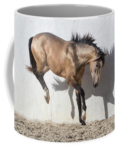Iberian Coffee Mug featuring the photograph Touching Down by Carol Walker