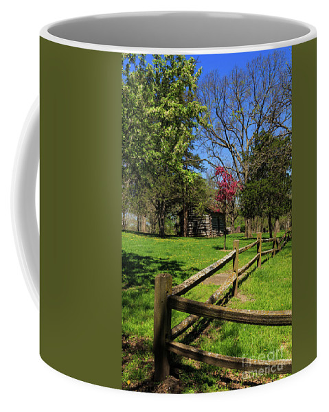 Fence Coffee Mug featuring the photograph Toward The Cabin by Terri Morris