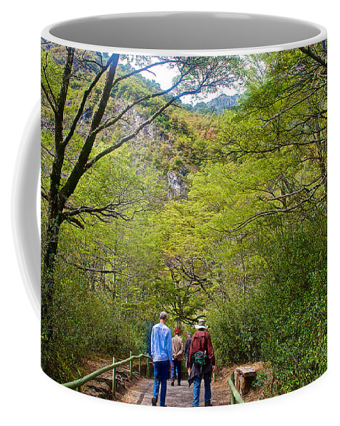 Trail To Waterfall In Vicente Perez Rosales National Park Near Puerto Montt Coffee Mug featuring the photograph Trail To Waterfall In Vicente Perez Rosales National Park Near Puerto Montt-chile by Ruth Hager