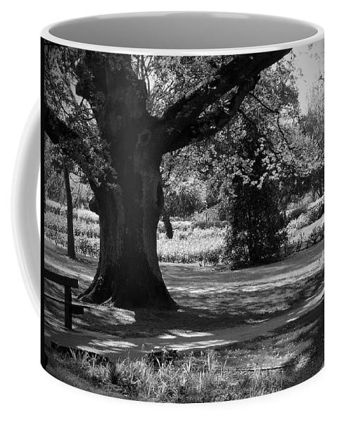 Irish Coffee Mug featuring the photograph Tralee Town Park Ireland by Teresa Mucha