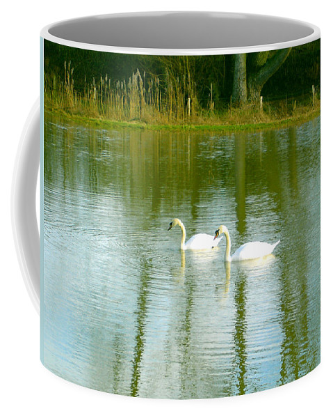 Swans Coffee Mug featuring the photograph Tranquil Reflection Swans by Susan Baker