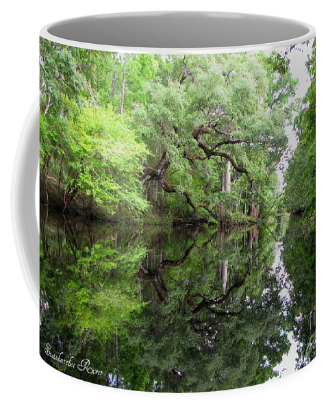 Tranquility Coffee Mug featuring the photograph Tranquility by Barbara Bowen