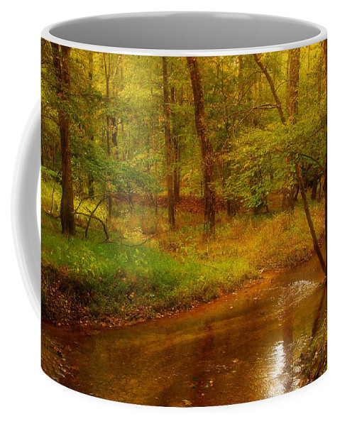 New Jersey Coffee Mug featuring the photograph Tranquility Stream - Allaire State Park by Angie Tirado