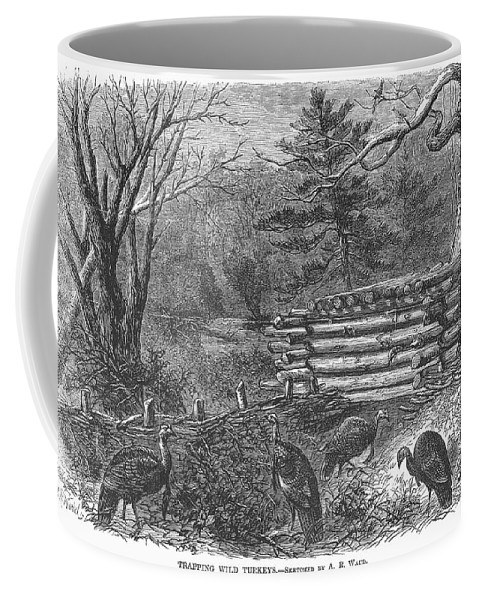 1868 Coffee Mug featuring the photograph Trapping Wild Turkeys, 1868 by Granger