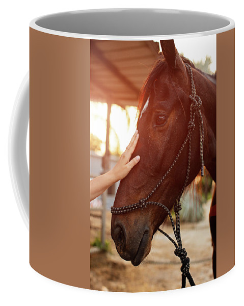 Woman Coffee Mug featuring the photograph Treating From Depression With The Help Of A Horse by Jan Pavlovski