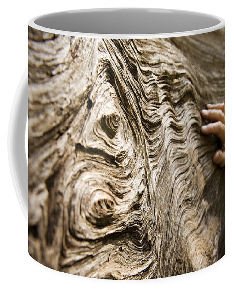 Tree Coffee Mug featuring the photograph Tree Bark And Hand by Dawn Kish
