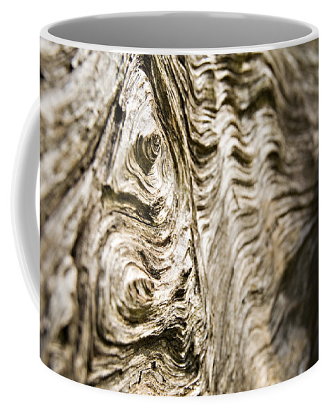 Tree Coffee Mug featuring the photograph Tree Bark by Dawn Kish