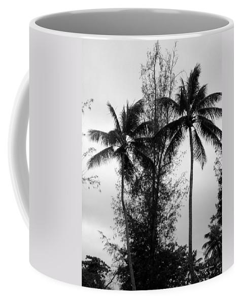 Palms Coffee Mug featuring the photograph Tree Between The Trees by Deborah Crew-Johnson