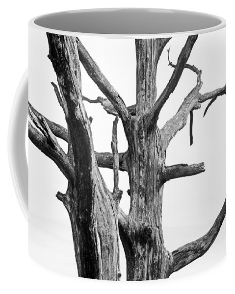 Dead Coffee Mug featuring the photograph Tree Branches by Jan Brons