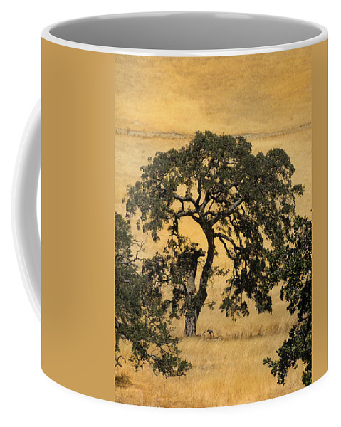 Trees Coffee Mug featuring the photograph Tree Formation 2 by Karen W Meyer