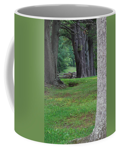 Trees Coffee Mug featuring the photograph Tree Line by Eric Liller