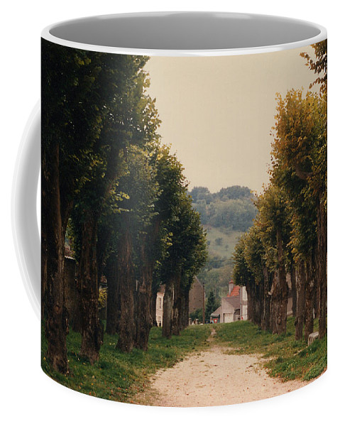 Trees Coffee Mug featuring the photograph Tree Lined Pathway in Lyon France by Nancy Mueller