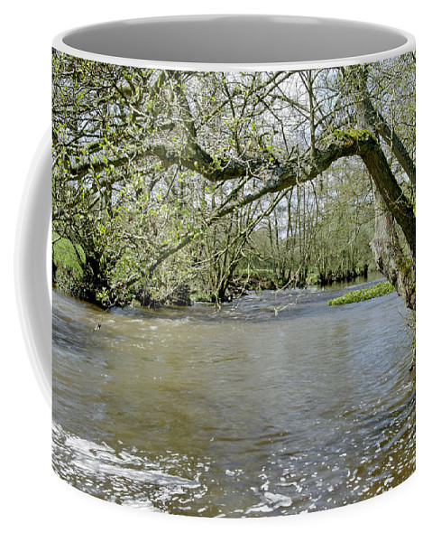 Bright Coffee Mug featuring the photograph Tree-lined - Swollen River Dove At Thorpe by Rod Johnson