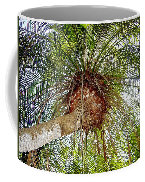Tree Coffee Mug featuring the photograph Tree Spray by Deborah Crew-Johnson