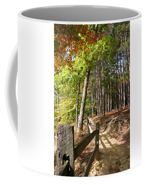 Tree Coffee Mug featuring the photograph Tree Trail by Margie Wildblood