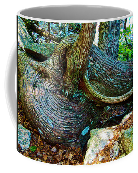 Tree Trunk By Jordan Pond In Acadia National Park Coffee Mug featuring the photograph Tree Trunk By Jordan Pond In Acadia National Park-maine by Ruth Hager