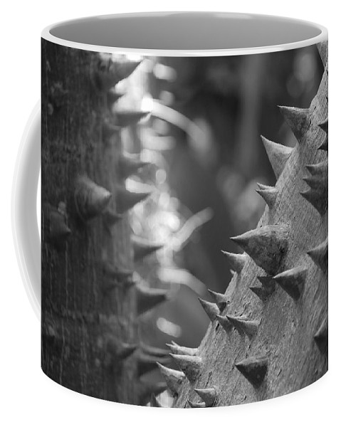 Spike Coffee Mug featuring the photograph Tree With Spikes And Thorns by Rob Hans
