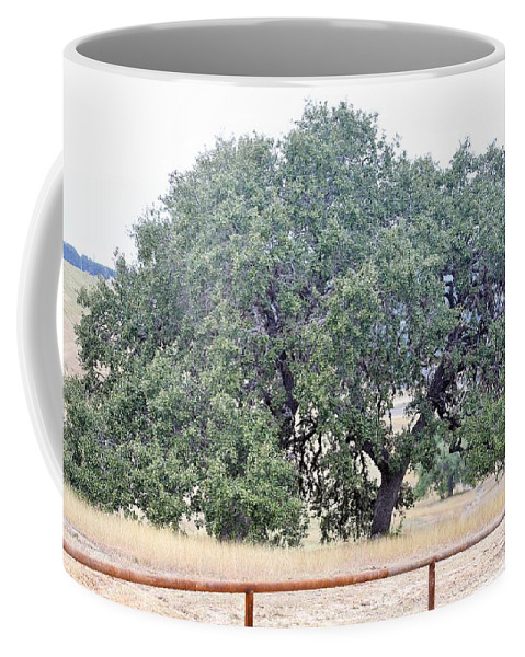 Coffee Mug featuring the photograph Trees 006 by Jeff Downs