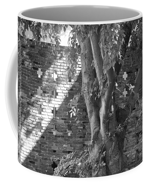 Trees Coffee Mug featuring the photograph Trees And Brick Crosses by Rob Hans