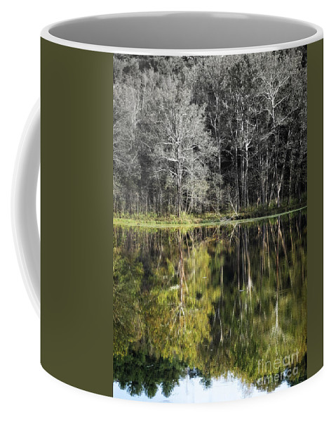 Nature Coffee Mug featuring the photograph Trees At Otter Point by Dawn Gari