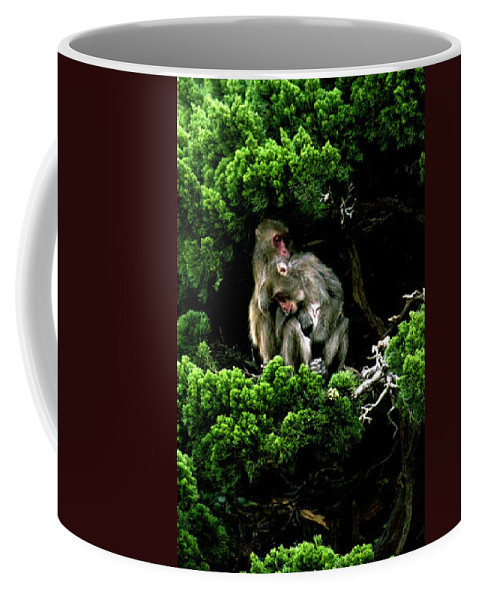 Trees Coffee Mug featuring the photograph Trees In Japan 10 by George Cabig