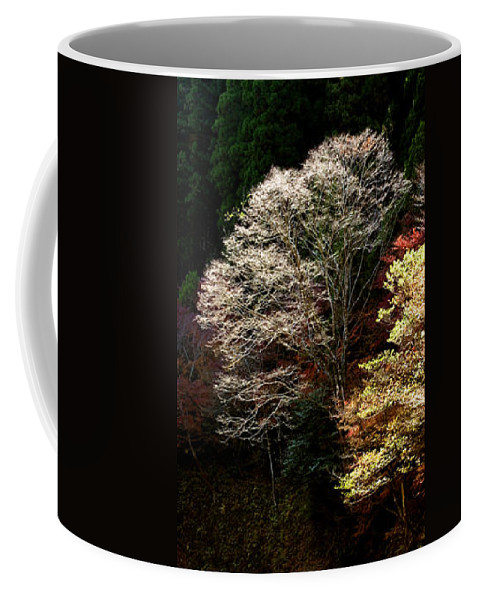 Trees Coffee Mug featuring the photograph Trees In Japan 11 by George Cabig