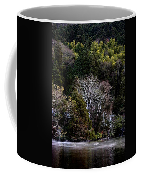 Landscape Coffee Mug featuring the photograph Trees In Japan 2 by George Cabig