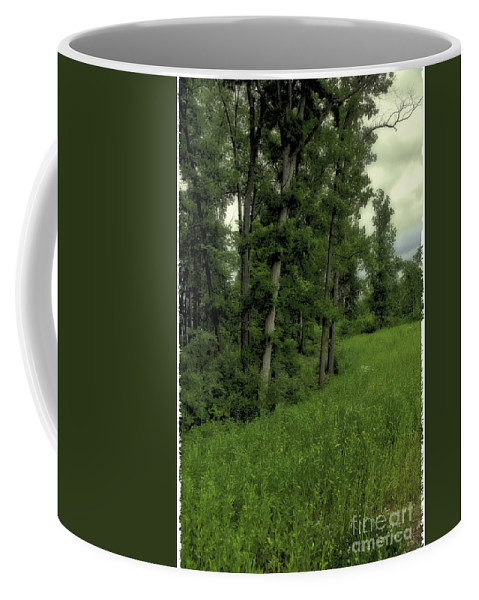Tree Coffee Mug featuring the photograph Trees by Madeline Ellis