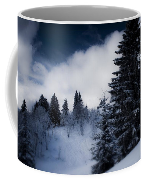 Miguel Coffee Mug featuring the photograph Trees Mountains And More Trees by Miguel Winterpacht