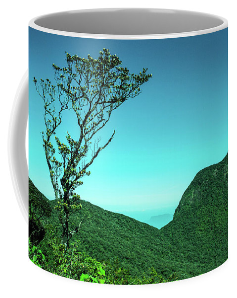 Nature Coffee Mug featuring the photograph Trees Of Life by Sithila Waduge