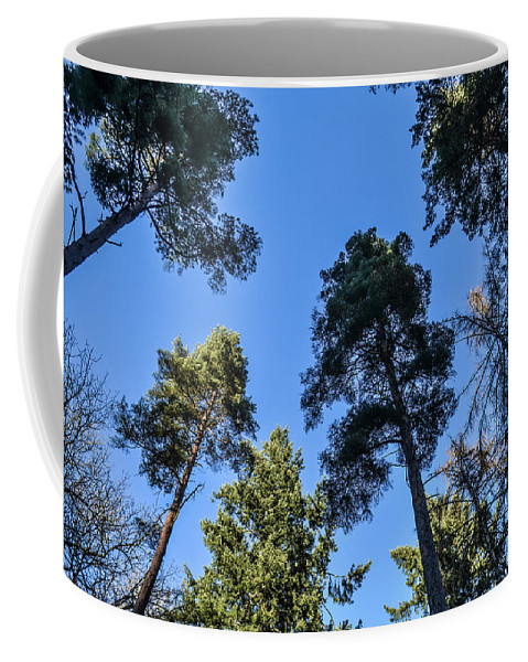 Beautiful Coffee Mug featuring the photograph Treetops by Natasha Larkin