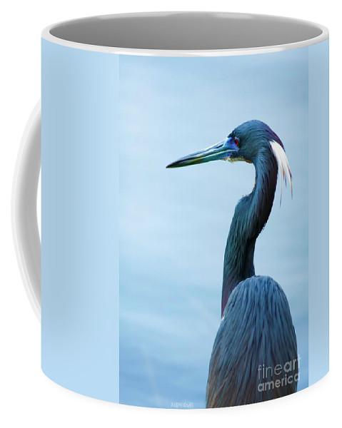 Tri Heron Coffee Mug featuring the photograph Tri Colored Pose by Deborah Benoit