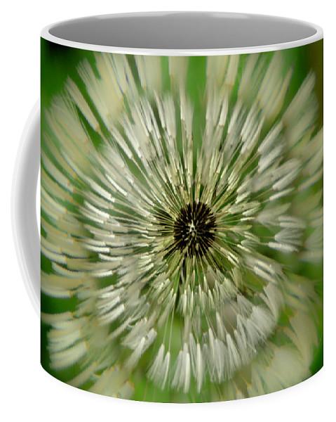 Dandelion Coffee Mug featuring the photograph Triple Dandelion by Wolfgang Stocker