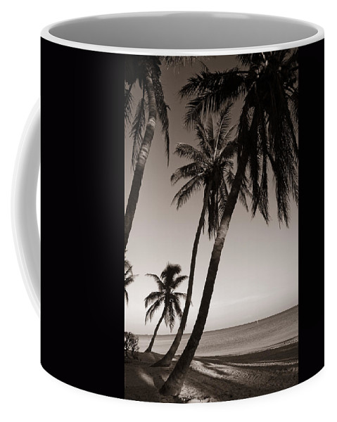 Black And White Photography Coffee Mug featuring the photograph Triple Palms by Susanne Van Hulst