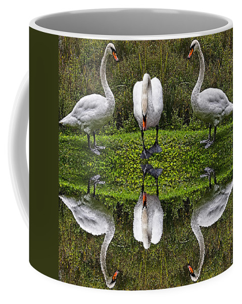 Swan Coffee Mug featuring the photograph Triplets In Reflection by Chris Lord