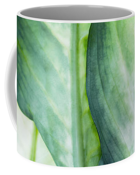 Summer Coffee Mug featuring the painting Tropic Green Abstract by Mark Ashkenazi