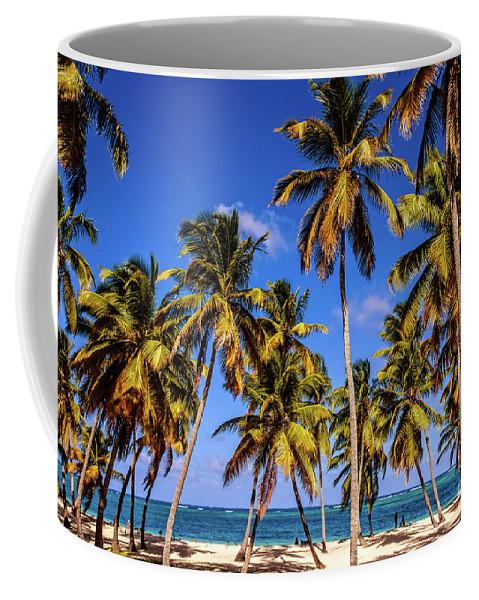 Tropical Coffee Mug featuring the photograph Palms On The Beach by Viktor Birkus
