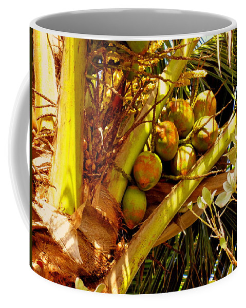 Coconuts Coffee Mug featuring the photograph Tropical Dreams 1 by Susanne Van Hulst